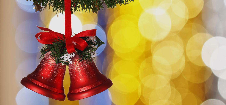 Veelgestelde vragen over Nordmann Excellent kerstbomen in Leiden