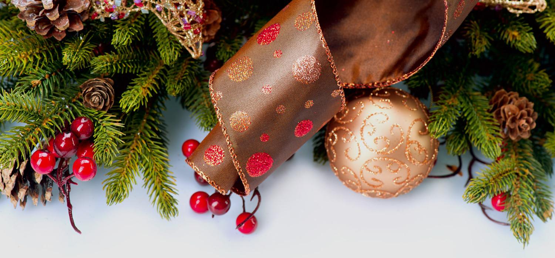 Nordmann kerstboom prijzen 2020 in Leiden