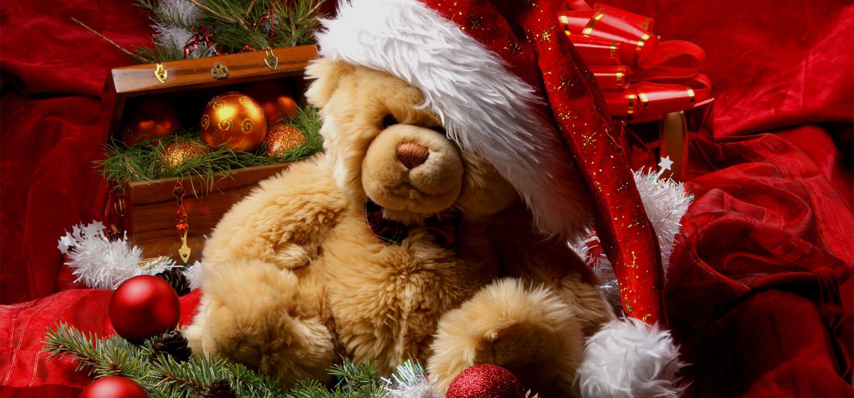 Kerstboom kerstgeschenk in Leiden