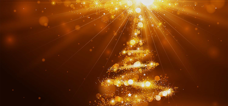 Kerstbomen voor bedrijven in Leiden